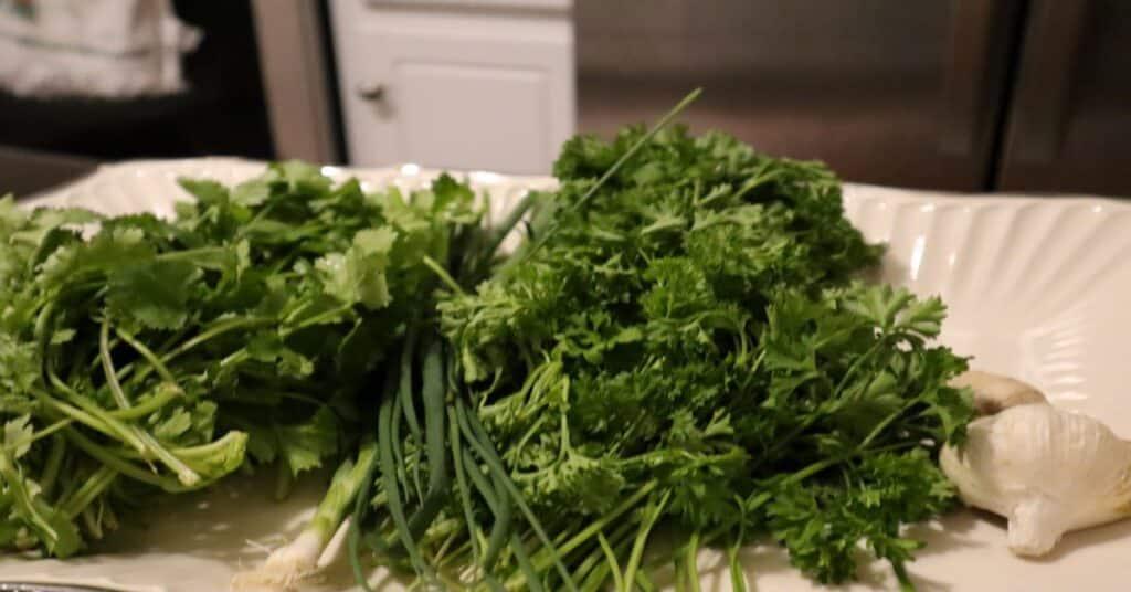 trinidad green seasoning fresh herb seasoning ingredients on a white serving tray